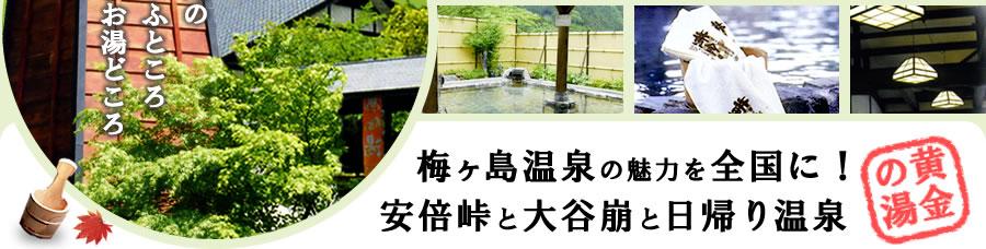 梅ヶ島温泉の魅力を全国に!安倍峠と大谷崩と日帰り温泉